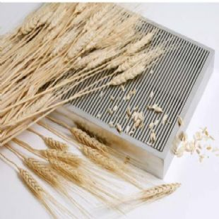 Wedge Wire Screen Flat Panel for Filtering and Grain Drying